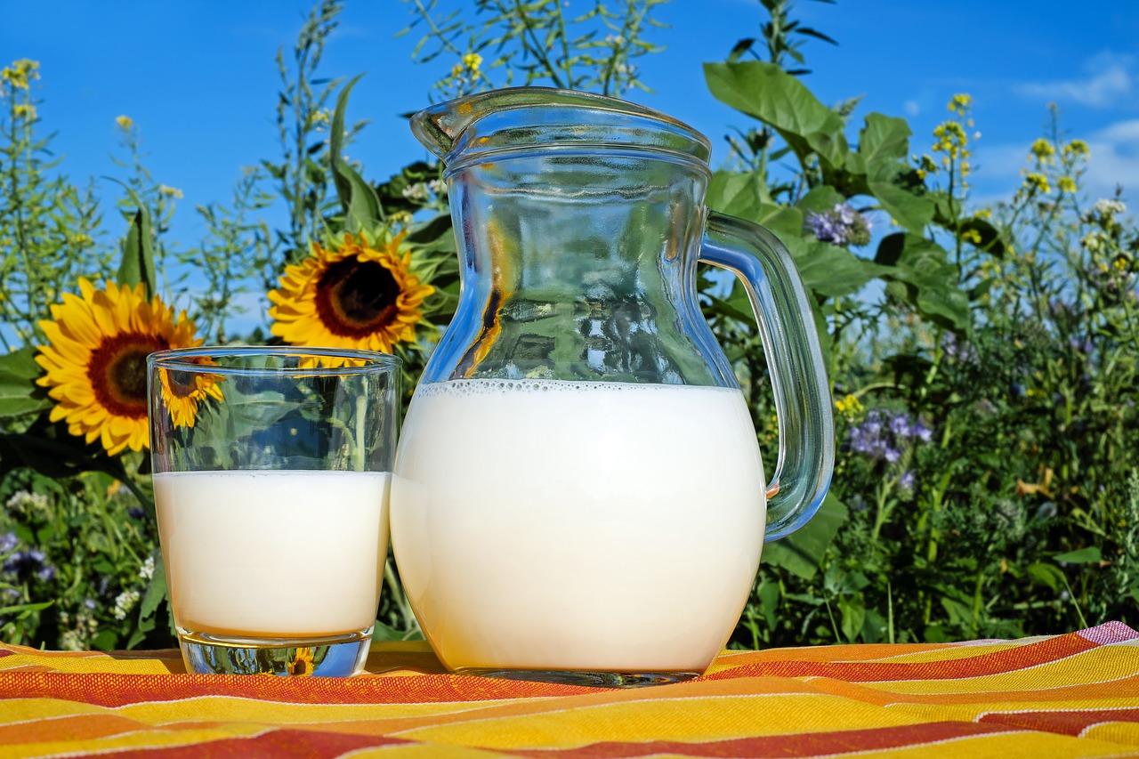 La leche y los productos lacteos - leche
