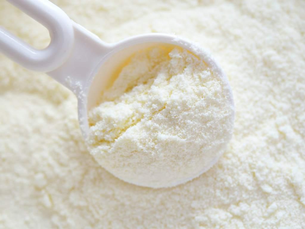 La leche y los productos lacteos - Leche en polvo