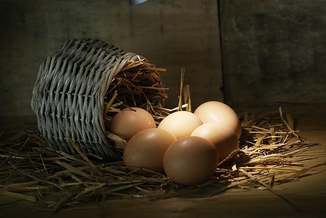 Alimentos que combaten el cáncer-Huevos